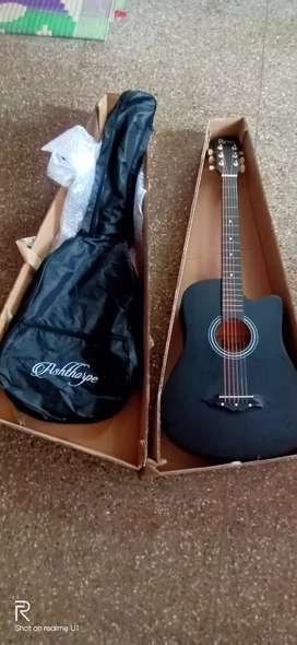 Acoustic guitar linden wood