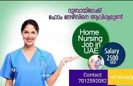 Caregiver, home nursing, babycare