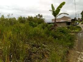 Tanah dijual di silangit siborong borong