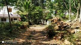 This land is situated  in pala, ponkunnam Highway