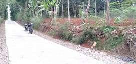 Tanah utara kantor desa sewurejo mojogedang