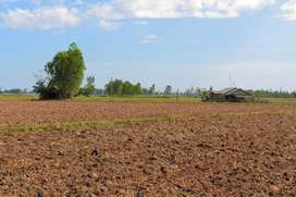 4 acres agriculture land