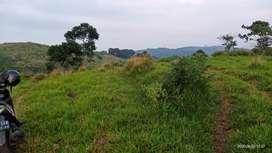 Tanah Luas Sukaresmi Cianjur sekitar Taman Bunga Puncak
