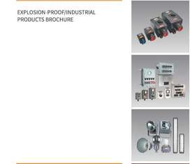 Explosion Proof Lights and Electrical Fittings