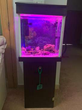 Fish Aquarium with wooden Stand & Hood