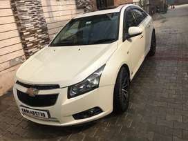 Cruze TOP model luxury