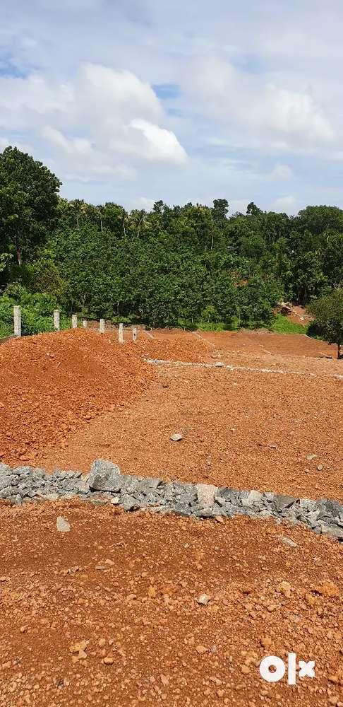 villa plot in vayanasala, thengode near infopark kochi