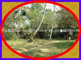 8 cents residential land in Perunthurthi near Eranhikkal
