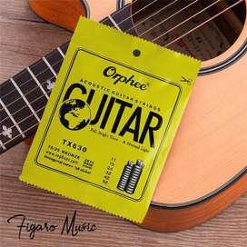 Senar Gitar Akustik / Acoustic Guitar - Orphee TX630 Normal Light