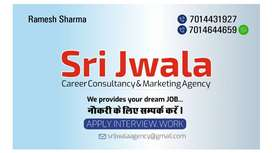 Receptionist & Front office ,sales man,teacher,marketing,