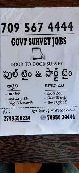 Government survey jobs for people