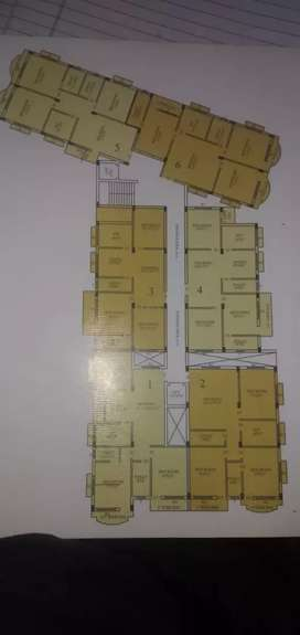 3bhk flat available on kusum vihar phase 2