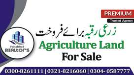 20 Acre Agriculture Land for Sale at Satiana Road to Jarranwala Road