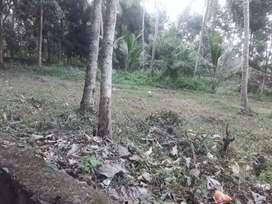 15 cent plot near kundooparamba. Per cent. 7 lakshs