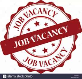 Job vacancy for freshers