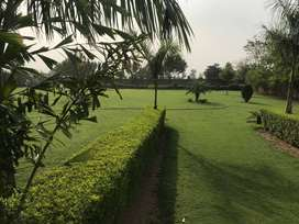 Farm House Sale In Sohna