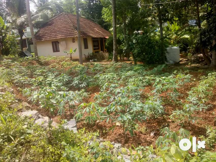 4 CENT LAND AREA FOR SALE AT VENGANOOR