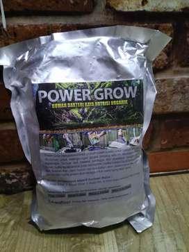 Rumah bakteri power grow
