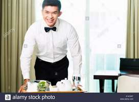 Urgently wanted steward for our own hotel