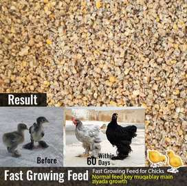 Fast Growing Feed for chicks and chickens