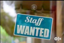 Lady office staff wanted