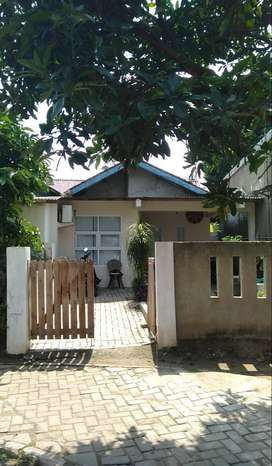 Jual Rumah Kampung 197 Meter Gading Serpong Tangerang