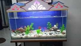 Aquarium with all accessories (new)