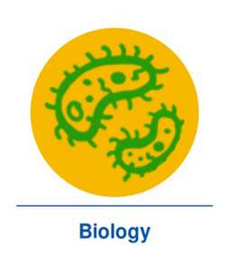 Science and Biology classes