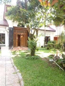 Hunian hommy ada Joglo kawasan Hyatt Regency Jogja
