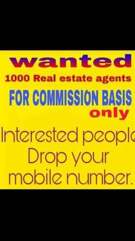 Wanted Marketing Executive for Real estate
