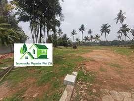 Twenty two acres land in Kalamassery