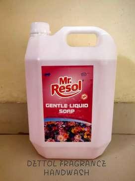 Dishwash gel toilet cleaner floor cleaner apple & dettol handwash