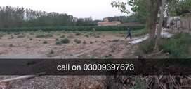 commercial land in charsadda