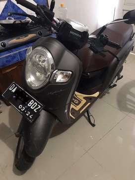 Scoopy Stylis Matte Brown 2019