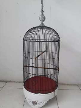 kandang lb/lovebird indo jaya