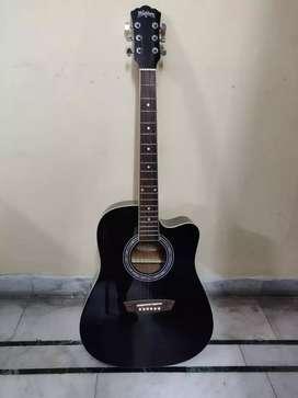 Brandnew Washburn Acoustic Guitar