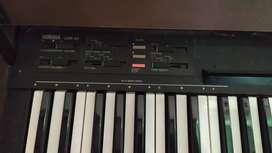 Organ Yamaha cnr 40