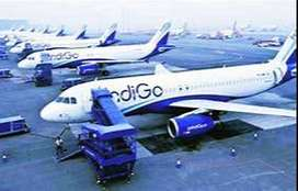 hiring long lasting candidates for indigo airlines apply now