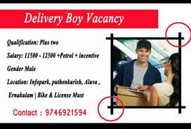 Delivery boy vacency ekm