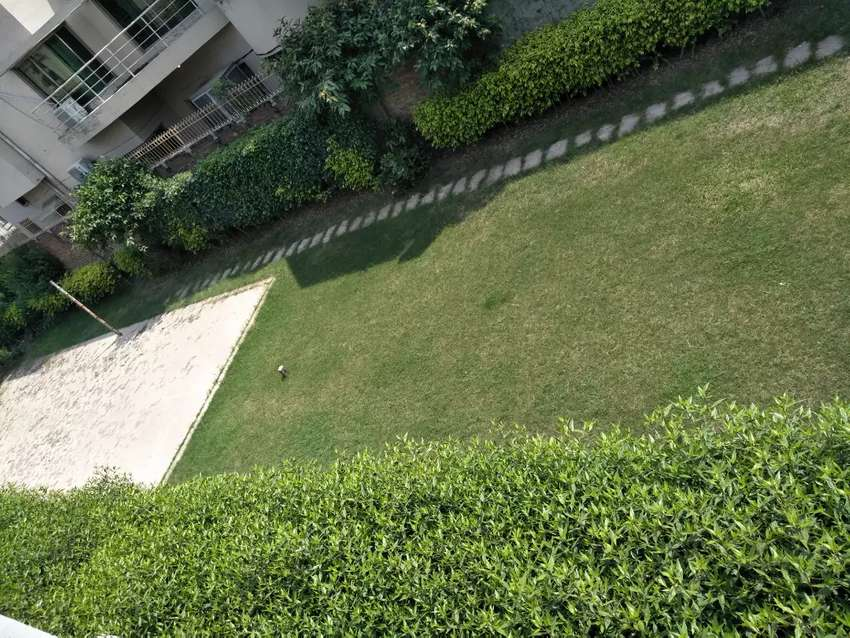 House For Rent Office/Residence 100 feet road 1 kanal lawn free 0