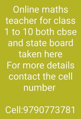 Online Maths teacher