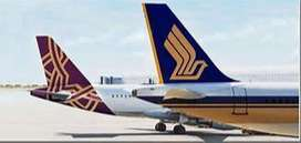 Vistara Airlines will be conducting a recruitment exercise for cabin c