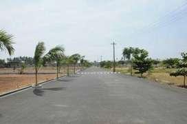 DTCP  plots  sale at saravanampatty