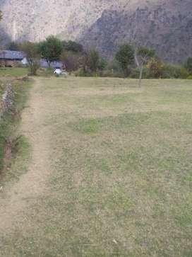 Plain land in mandyara village mehla chamba