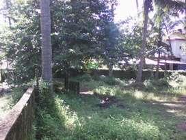 Farm house with plot 650 sq meter in caroja cuncolim