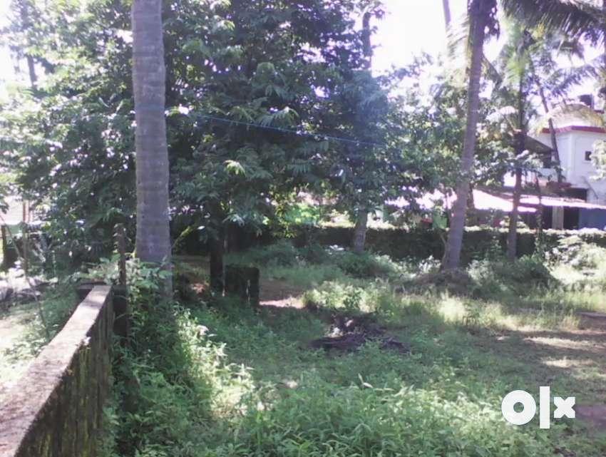 Farm house with plot 650 sq meter in caroja cuncolim 0