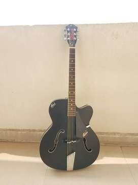 Guitar hobner(new)