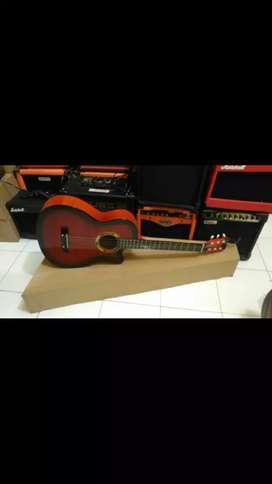 Gitar Akustik Pemula 01