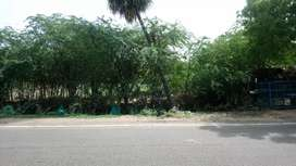 COMMERCIAL/Showroom/plot/33800/sqft/sale /Trichy.