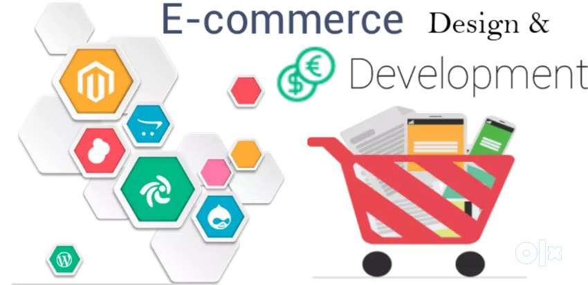 Ecommerce Website and App Development Company 0